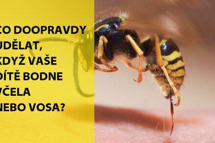 Když dítě píchne vosa nebo včela: Kdy volat doktora?