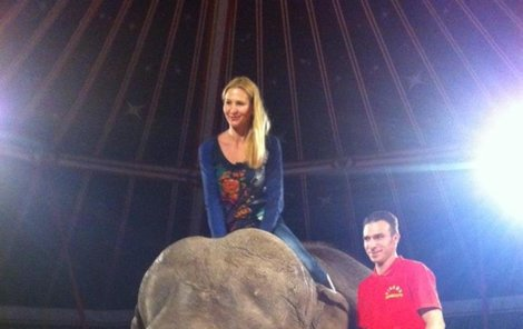Ivana se projela na obrovitém slonovi!