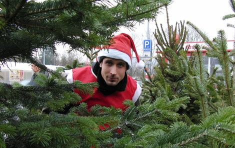 S vánočním stromkem se pojí plno tradic.