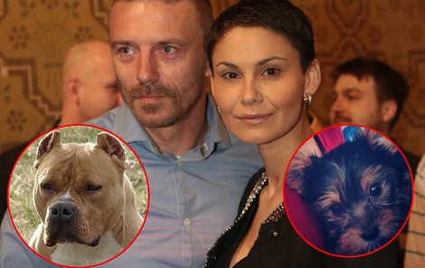 Tomáš Řepka s Vlaďkou Erbovou si pořídili nového mazlíčka.
