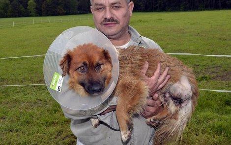 O Lišáčka se teď stará zvířecí záchranář Karel Bobál.