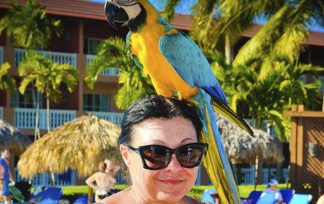 Dádu si oblíbil nádherný papoušek. Náklonnost byla oboustranná. Žížala Jůlie.