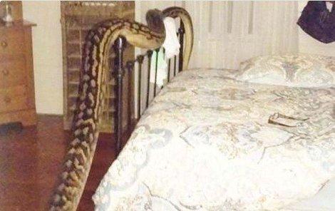 O půl páté ráno ji vzbudil zvláštní hluk!