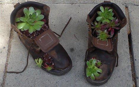Staré pracovní boty poslouží jako květináč.