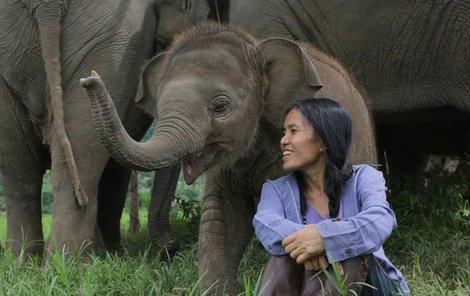 Slony uklidňuje tím, že jim zpívá ukolébavky!