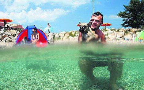 Plážové psí kusy...