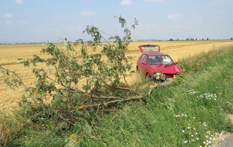 Takhle zničila žena své auto, když se nevěnovala řízení.