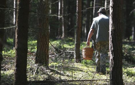 Než vyrazíte do lesa...