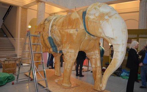 Model slona indického je věrnou kopií Calvina z ostravské zoo, otce prvního českého slůněte.