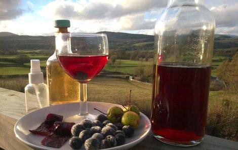 Z trnek si můžete připravit likér nebo víno.