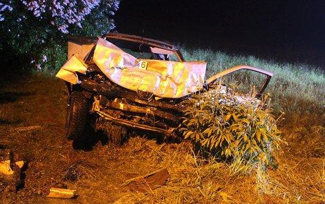 Řidička byla během jízdy nepříčetná.
