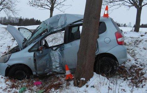 Auto se po smyku rozbilo o strom.