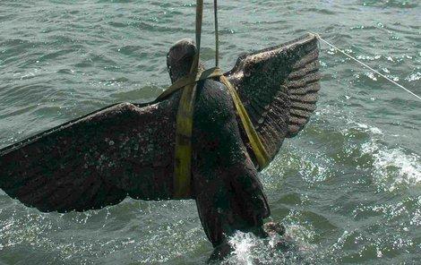 Pýcha německé armády Graf Spee. Potápěči vytahují na světlo bronzovou říšskou orlici.