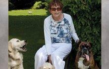 Temná tvář Věry Chytilové: Problémová sousedka! Její pes potrhal dvouleté dítě!