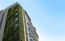»Nahoďte« zelenou fasádu! Fenomén: Vertikální zahrady ve světových velkoměstech!