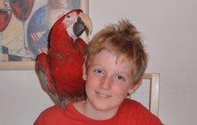 VIDEO Smutní kluci Mikuláš (10) a Václav (9): Ulétl nám Kristián! Pomozte papouška najít!