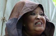 Jiřina Bohdalová (82) se modlí: Nechce být ve stáří bez sebe a na obtíž!