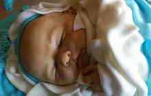 Děsivé! Pár hodin po pořízení tohoto snímku vyfocené miminko snědli!