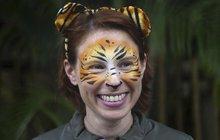 Říkala si zaříkávačka tygrů: Už neříká nic, jeden ji…