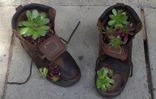 Když už botky neslouží... Zasaďte do nich květiny!