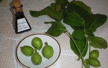 Chráněná přírodou: Vyzkoušejte olej z listu ořešáku!