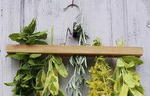 Když nevíte kam s bylinkami, usušte je na ramínku!