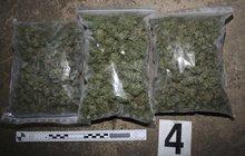 Festival v rauši: Policie zabavila 3 kila trávy!