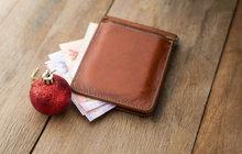 Pasti Vánoc: Zkroťte svůj domácí rozpočet!