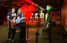 Když jsou děti po Vánocích neposedné, zabavte se spolu s nimi na interaktivních výstavách: Věda na vlastní kůži!