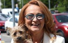 Do života Simony Stašové vstoupila nová láska, jmenuje se Pepča. Způsobuje majitelce malé trable, třeba když při představení štěká, jinak je to takový divadelní pes. Doprovází paničku všude.