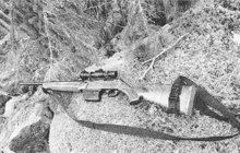 Mladou vedoucí poštovního úřadu v Humenném na východním Slovensku zastřelil v května 1968 vrah (27) z nedalekých Velkých Kapušan. Šok, který přítomní zažili, byl o to větší, že úřednici zavraždil její vlastní manžel.