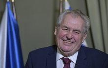 Prezident Zeman v Hošticích: Slunce, seno a selátko!