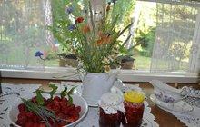 Mnohem raději sice aranžuje a opečovává kytky, ale když je úroda, neváhá. V kuchyni Marty Stiborové na chalupě v Brusném na Kroměřížsku včera voněly jahodový džem, máta i levandule.