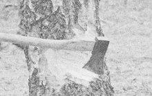 Sekerou udeřil hned několikrát do hlavy vlastní tchyni (†58) strojník (38). Žena útok běsnícího zetě nepřežila. K tragédii došlo 7. května 1968 v obci Helcmanovce poblíž slovenské Spišské Nové Vsi.