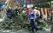 Děsivé neštěstí v turistickém ráji! Třináct lidí v úterý zabil padající 200 let starý dub během oslav svátku Nanebevzetí Panny Marie na Madeiře. Neštěstí zavinily liknavost a fušeřina: kmen stromu dávno shnil, zpevňoval jej ale jen drát!
