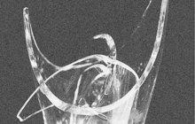 Spor dvou žen v Plzni vyvrcholil počátkem března 1987 tragickou, přitom zcela zbytečnou smrtí jedné z nich (†33). Nešťastnice vykrvácela poté, co jí skleněný střep přeťal krční tepnu. Na vině byl rozčílený manžel (33) její odpůrkyně.