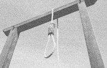 Vyhnul se šibenici, ale nakonec se oběsil sám. Sebevraždu spáchal v trestnici na plzeňských Borech koncem listopadu 1936 trestanec Josef F. (†40) z Třebíče. Původně byl odsouzen k trestu smrti provazem, ale odvolací soud mu trest změnil na doživotí v nejtužším kriminálu.