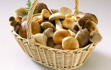 Přichází houbařský víkend! 10 tipů na správné zpracování hub!