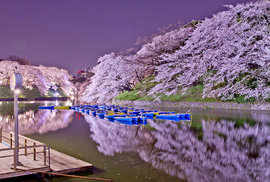 Nejkrásnější rozkvetlá místa na světě. Tady chcete být prvního máje políbena!