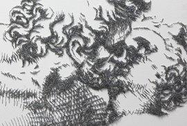 Obrazy vytvořené z drátků do sešívačky