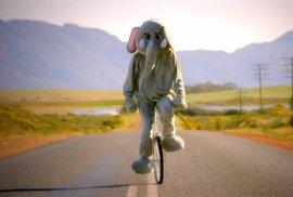 Nejlepší hudební klip o kolech? Coldplay nestačilo ani 155 milionů diváků, ani slon na jednokolce