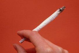 Když kouřit trávu, tak až od osmnácti. To už po ní asi nezhloupnete