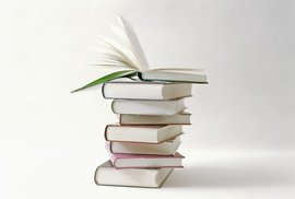 Rok 2013 na českém knižním trhu: Brown, Coelho, Nesbø, dalších Padesát odstínů, noví lichožrouti i Rowlingová pro dospělé