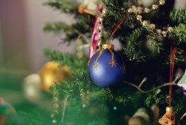 Budete mít na vánočním stromku hodně světýlek? Zpomalí vám to wifi, varují experti