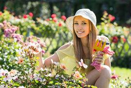 Skleník z PETky i růže z brambory. 5 vychytávek, které potřebuje každý chytrý zahradník