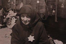 Prohlédněte si unikátní fotografie, jež posloužily jako klíčový důkaz o holokaustu
