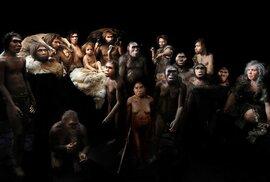 Jak vypadali lidští předkové