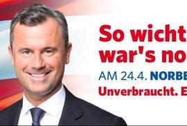 Rakousko míří k prezidentské senzaci: Průzkumy hovoří pro uhlazeného antiislamistu Hofera