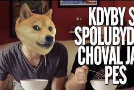 Youtubeři českého internetu