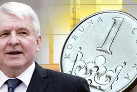 Čeští politici okamžik pro přijetí eura už propásli, nyní by o tom už měli rozhodnout občané v referendu